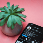 Best Web Apps to Find Influencers - Picture of plant and smartphone with web app on it